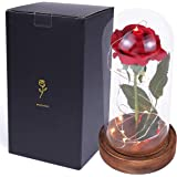 sexyrobot Beauty and The Beast Red Rose, Silk Flower with LED Light in a Glass Dome for Home Decor Holiday Party Wedding Anni