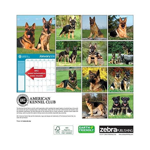 German Shepherds Americ...の紹介画像2