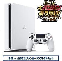 PlayStation 4 グレイシャー・ホワイト 500GB (CUH-2200AB02) お好きなダウンロードソフト2本セット(配信)