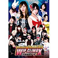 【Amazon.co.jp限定】豆腐プロレス The REAL 2017 WIP CLIMAX in 8.29 後楽園ホール