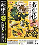 カプセルQミュージアム 若冲の花 伊藤若冲・花卉立体図 全5種セット
