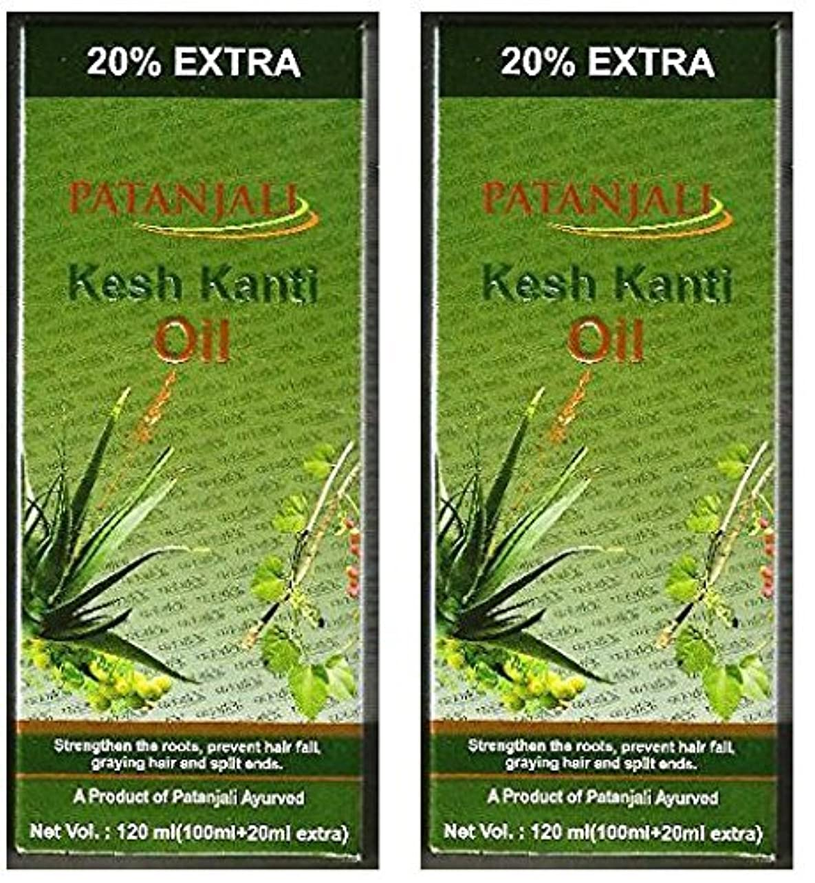 2 x Patanjali Kesh Kanti Hair Oil 100ml (Pack of 2) [並行輸入品]