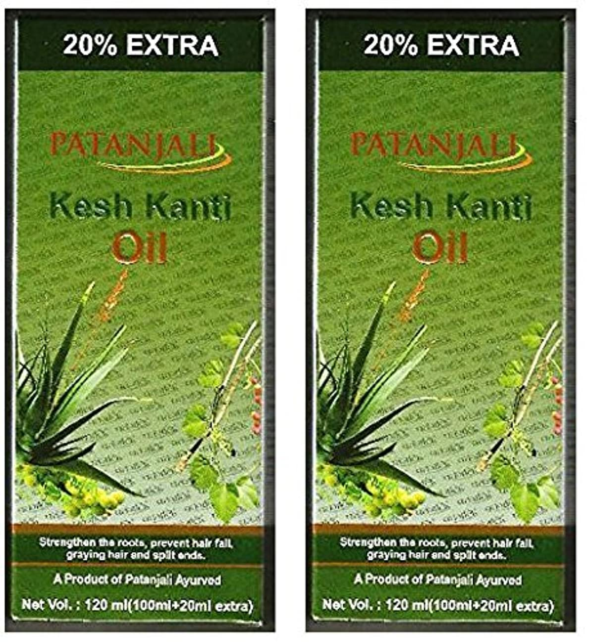 木曜日実業家郵便2 x Patanjali Kesh Kanti Hair Oil 100ml (Pack of 2) [並行輸入品]