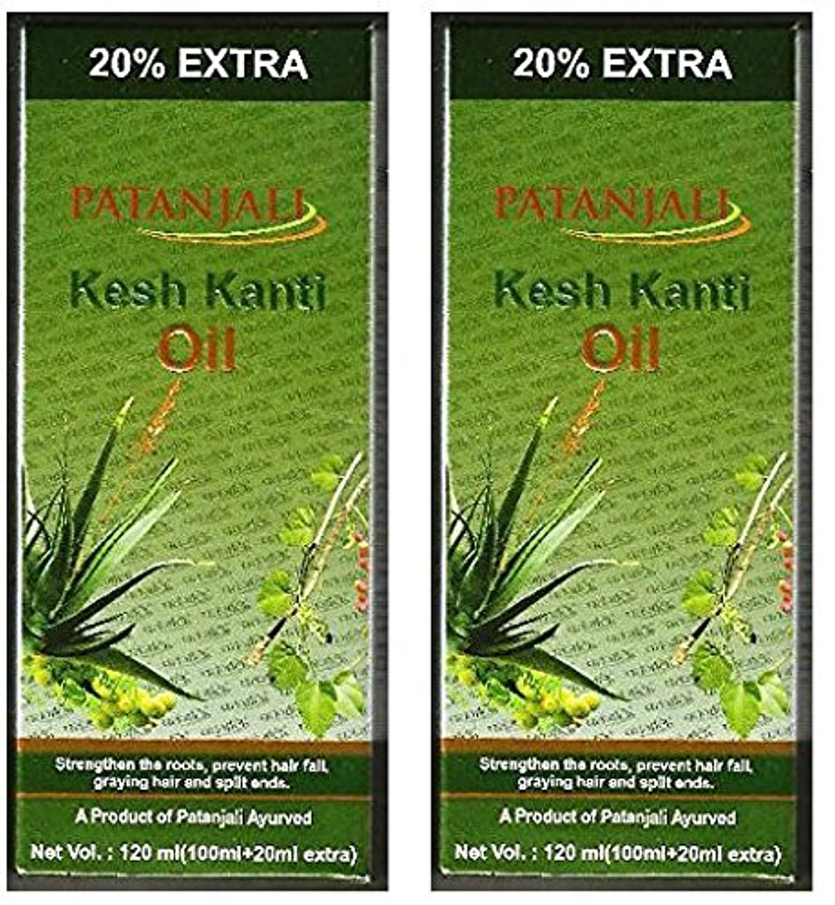 ラウンジ投資敵2 x Patanjali Kesh Kanti Hair Oil 100ml (Pack of 2) [並行輸入品]