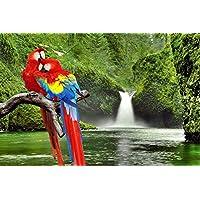 枝のマコウバウ動物 - #9518 - キャンバス印刷アートポスター 写真 部屋インテリア絵画 ポスター 90cmx60cm