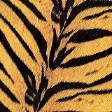 Tigermobile(初回生産限定盤)