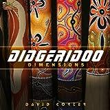 ディジュリドゥの音楽 (Didgeridoo Dimensions)