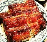 ジャンボ炭火うなぎ蒲焼1本(約140~160g)(うなぎタレ・山椒付)うなぎ 鰻 ウナギ 蒲焼き 訳あり