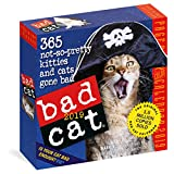 Bad Cat 2019 Calendar: 365 Not-so-pretty Kitties and Cats Gone Bad