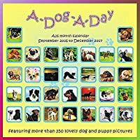 A Dog A Day 2017 Wall Calendar [並行輸入品]