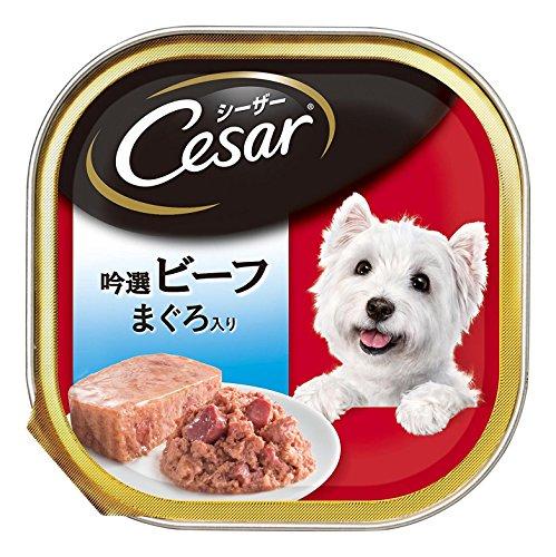 シーザー 限定 成犬用 吟選ビーフ まぐろ入り 100g×24個 (まとめ買い) [ドッグフード・ウェット]