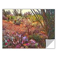 ArtWall Artapeelz Dean Uhlinger 「Sonoran Spring」取り外し可能なグラフィックウォールアート 18x24 0uhl306a1824p