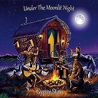 Under the Moonlit Night
