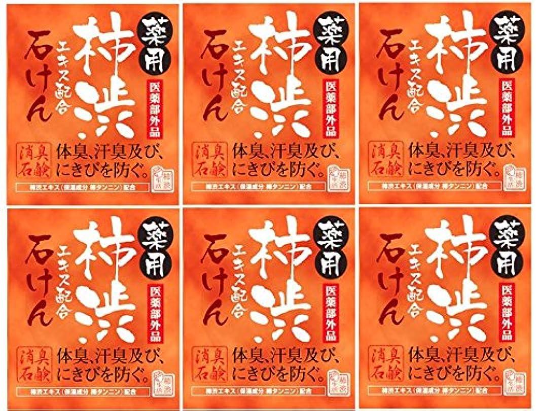 疫病襟不名誉なマックス薬用柿渋石けん100g箱×6箱セット