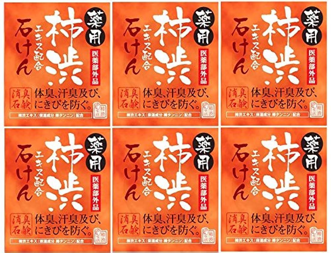 プレフィックスベーコン貪欲マックス薬用柿渋石けん100g箱×6箱セット