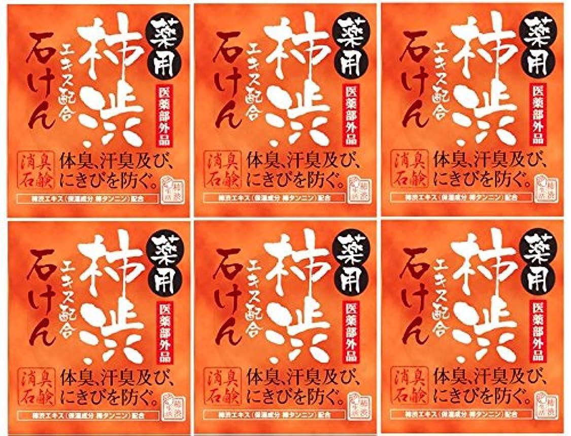 不毛の広がり説明的マックス薬用柿渋石けん100g箱×6箱セット