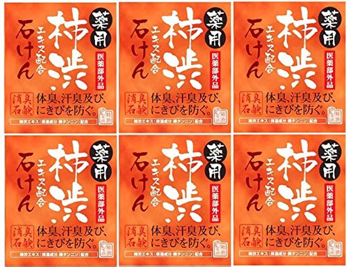 もし標準王子マックス薬用柿渋石けん100g箱×6箱セット