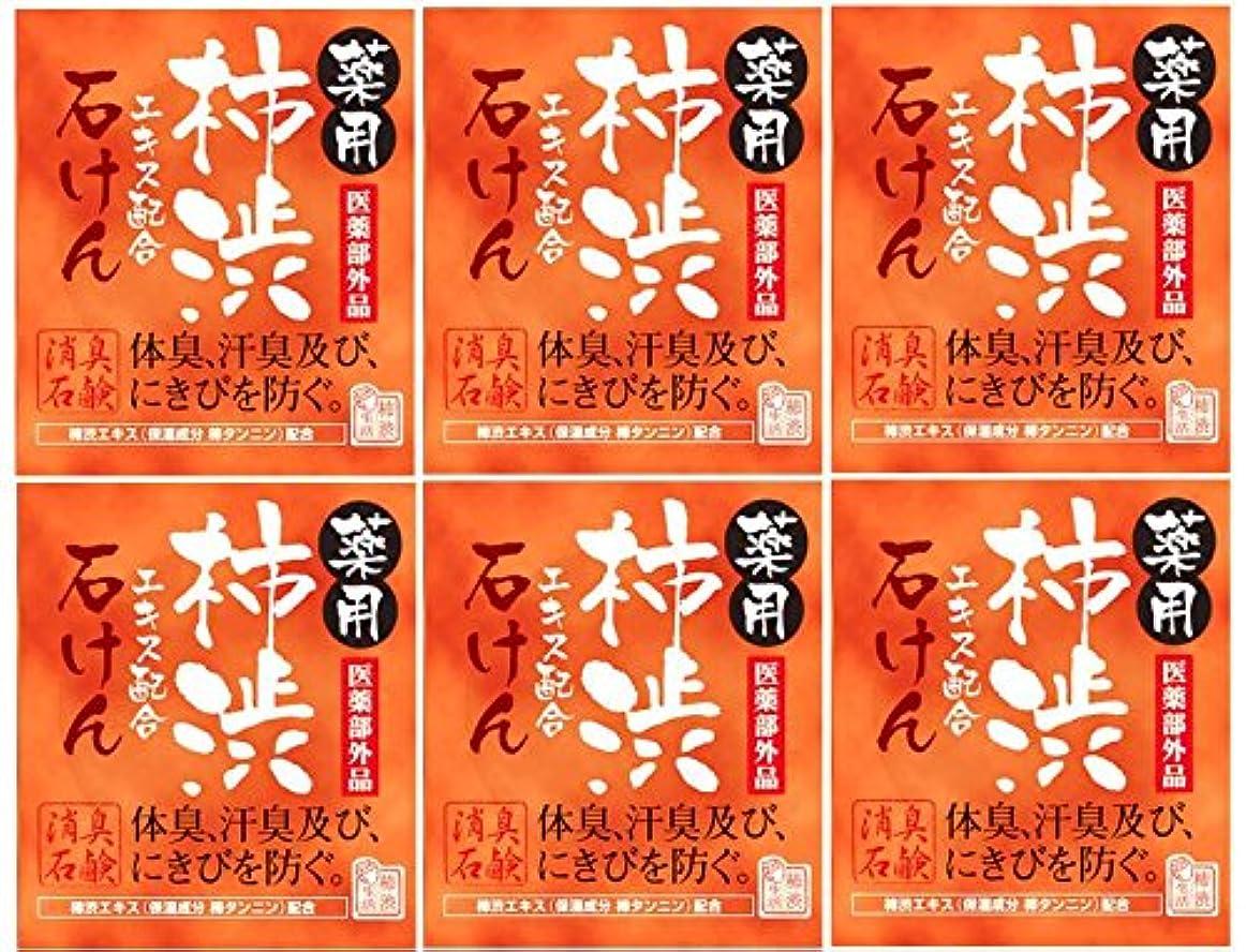 マッシュ読みやすいキラウエア山マックス薬用柿渋石けん100g箱×6箱セット