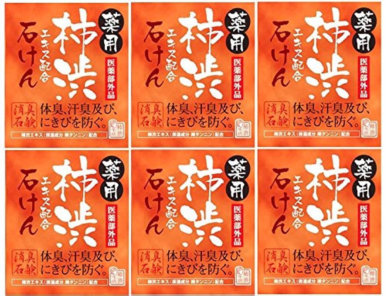 トムオードリースパパ後退するマックス薬用柿渋石けん100g箱×6箱セット