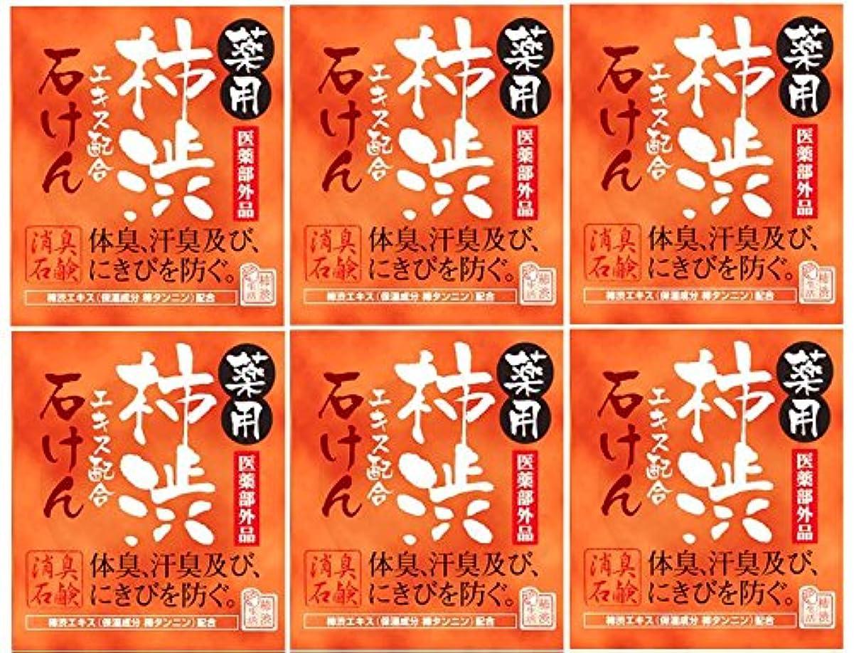 処方する正気入口マックス薬用柿渋石けん100g箱×6箱セット