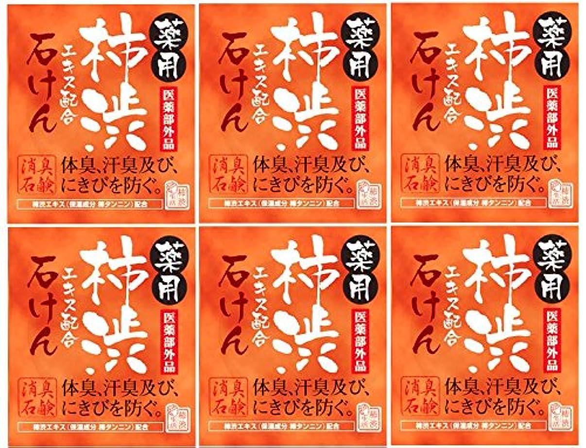 カバー祭り第三マックス薬用柿渋石けん100g箱×6箱セット