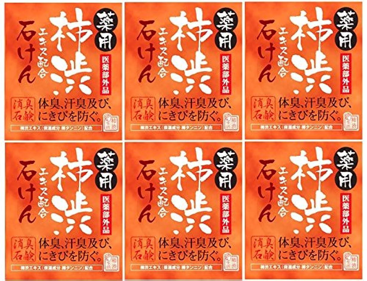 エネルギーチャペルドローマックス薬用柿渋石けん100g箱×6箱セット