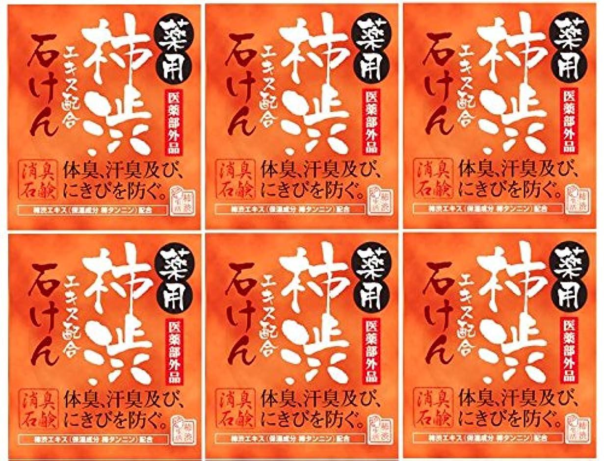 レベル汚染された減らすマックス薬用柿渋石けん100g箱×6箱セット