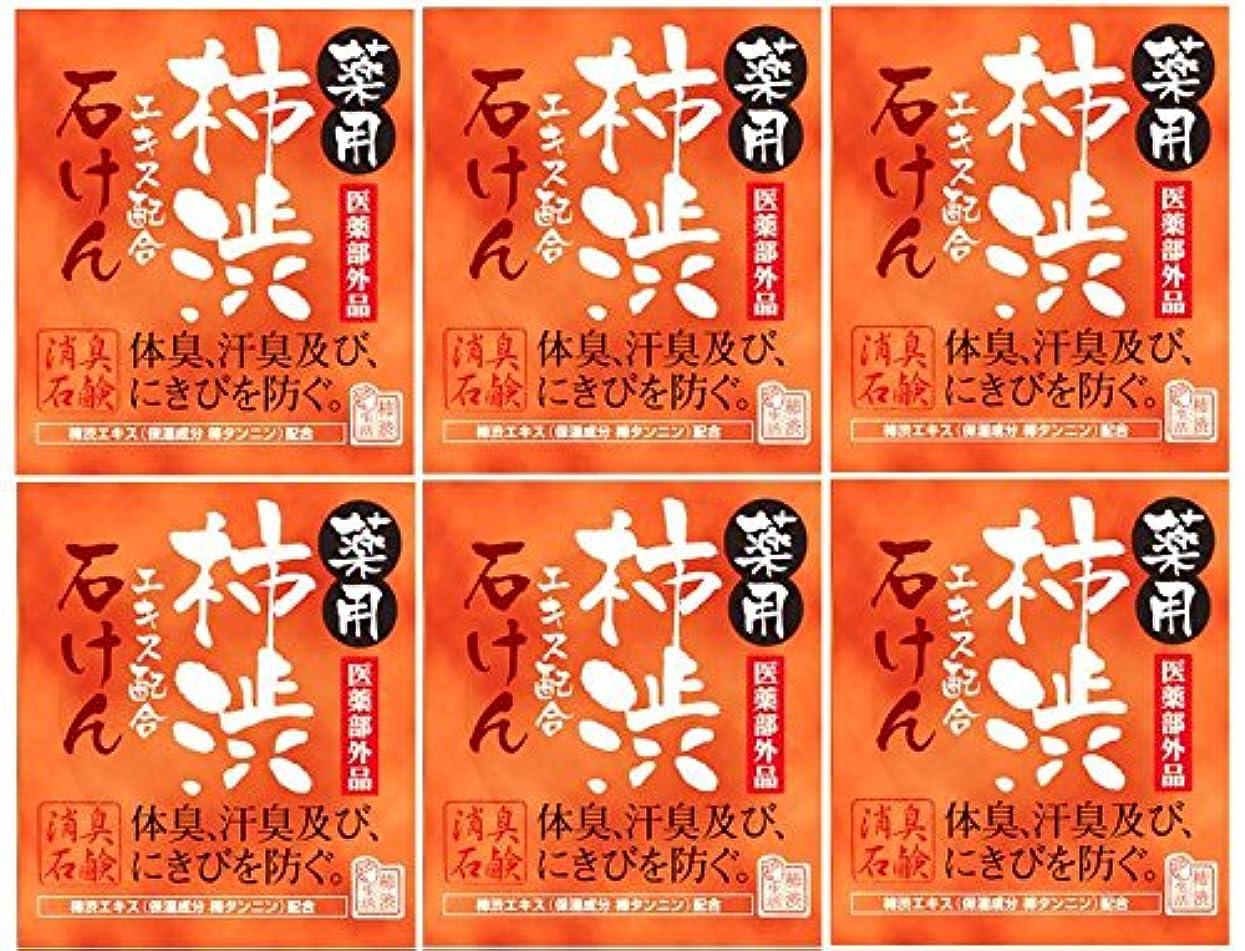 中傷瞳否認するマックス薬用柿渋石けん100g箱×6箱セット