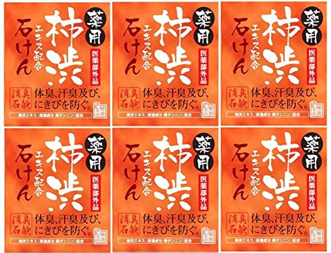 文放置押すマックス薬用柿渋石けん100g箱×6箱セット