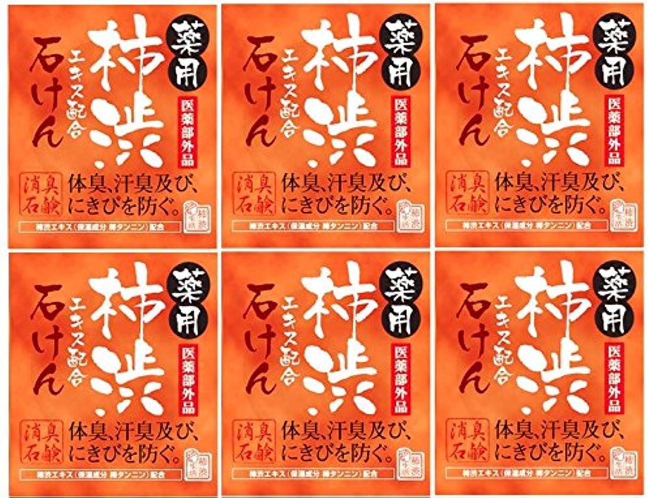 宣言ジーンズこどもの宮殿マックス薬用柿渋石けん100g箱×6箱セット