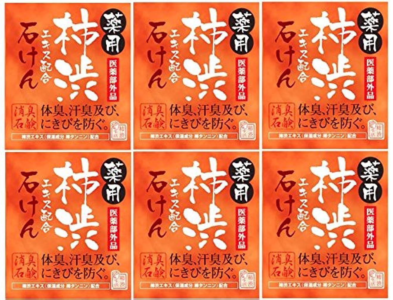終了する展示会リングバックマックス薬用柿渋石けん100g箱×6箱セット