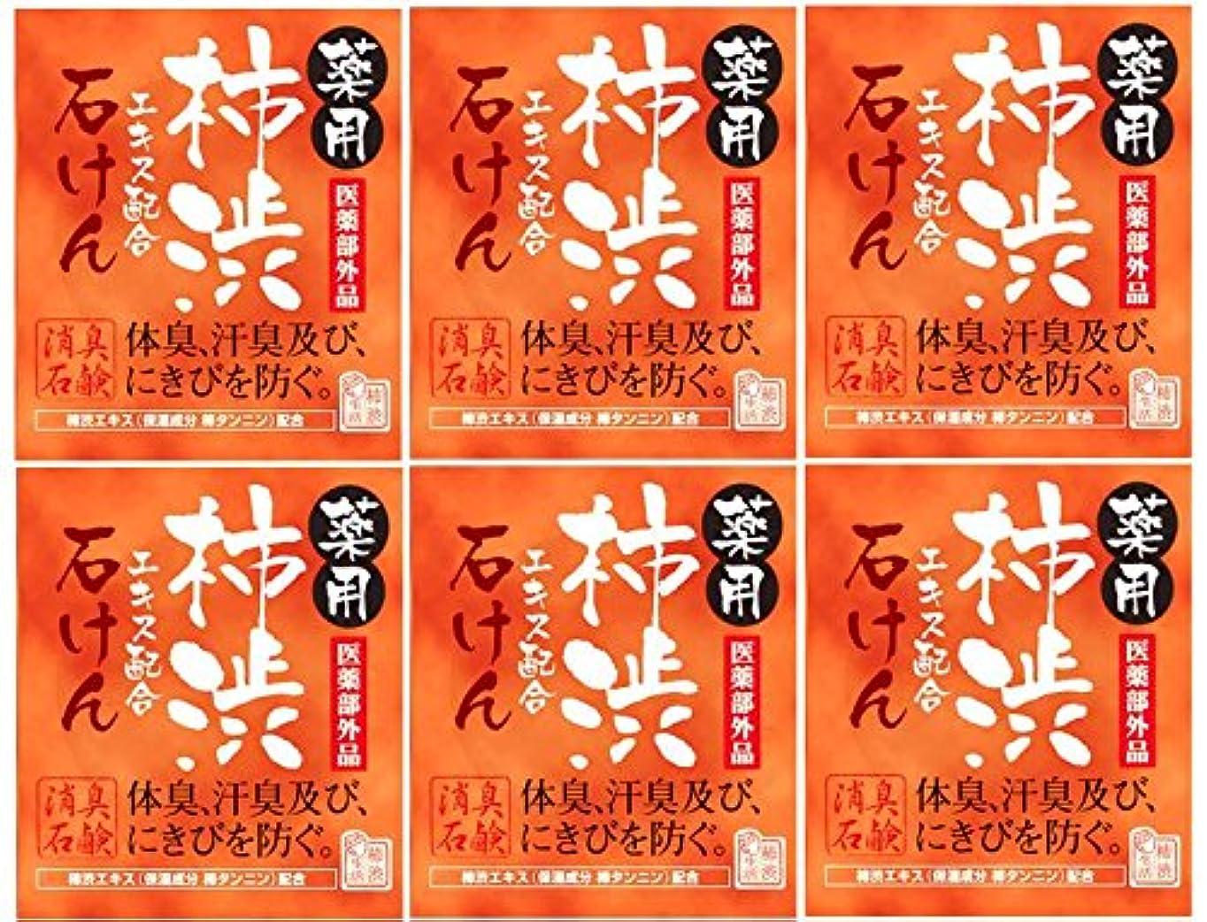 かなりのローン指導するマックス薬用柿渋石けん100g箱×6箱セット