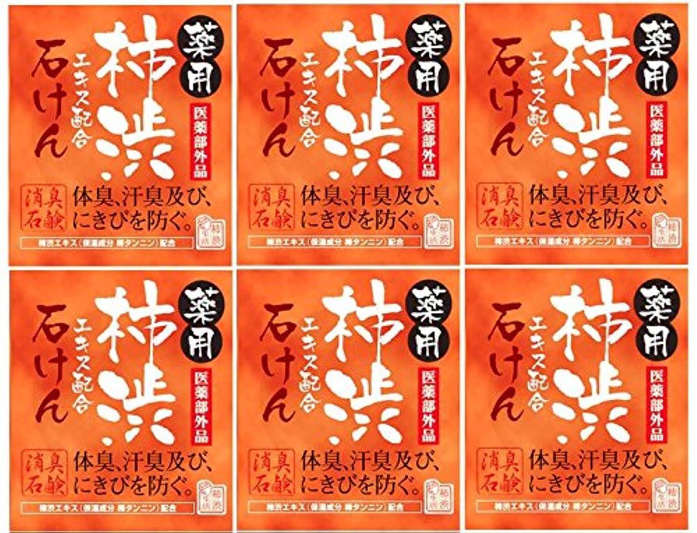鎮静剤緑漫画マックス薬用柿渋石けん100g箱×6箱セット
