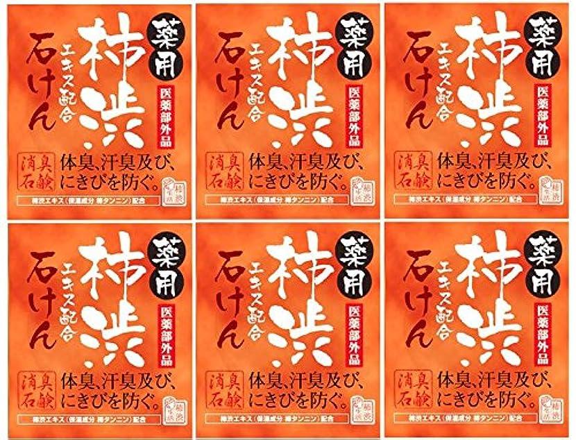 コミットレシピ十分ですマックス薬用柿渋石けん100g箱×6箱セット