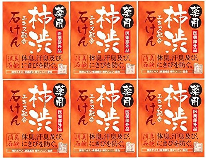 曖昧なスタッフ憲法マックス薬用柿渋石けん100g箱×6箱セット