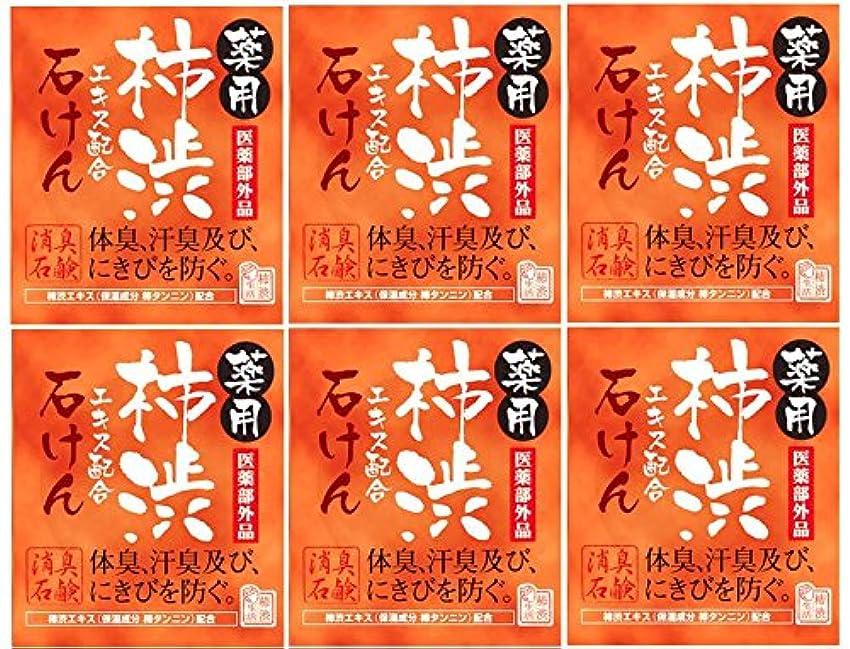 パイパンチ童謡マックス薬用柿渋石けん100g箱×6箱セット