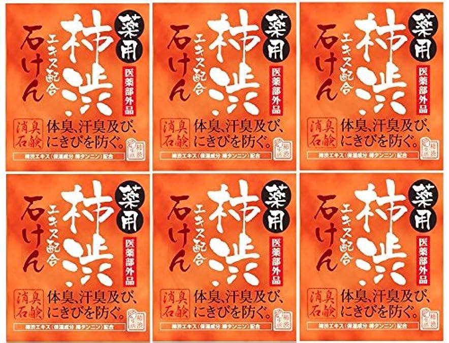 オーブン海外粘り強いマックス薬用柿渋石けん100g箱×6箱セット