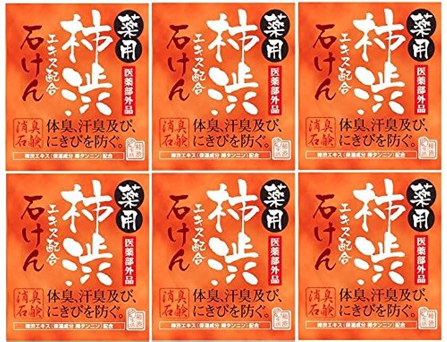サーバカタログブレンドマックス薬用柿渋石けん100g箱×6箱セット