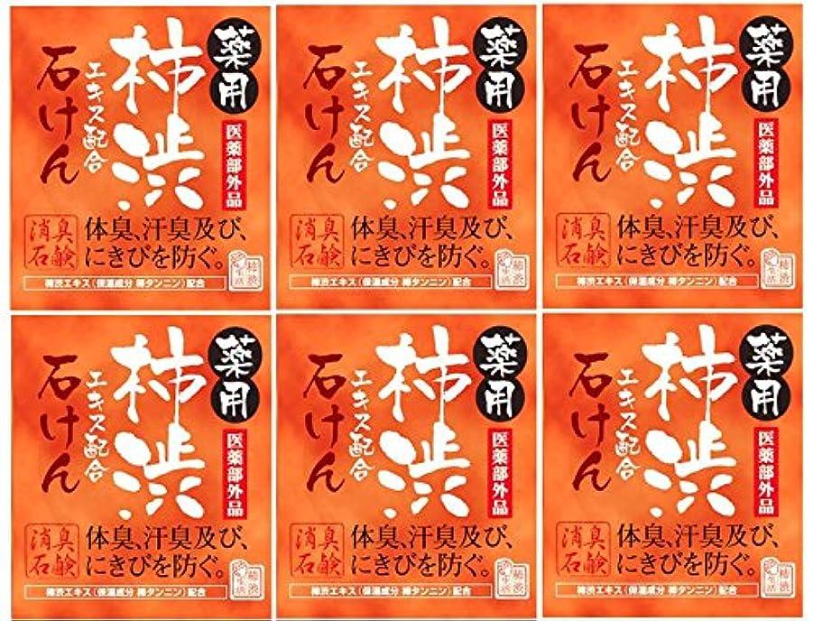 韓国期待根拠マックス薬用柿渋石けん100g箱×6箱セット