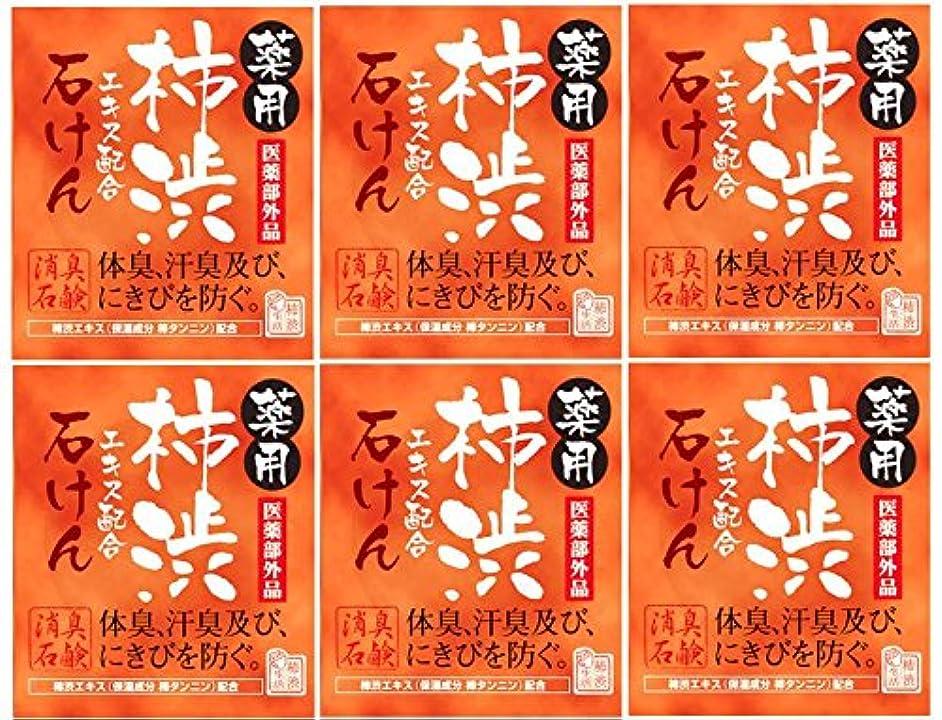 葉を集める前提知り合いマックス薬用柿渋石けん100g箱×6箱セット