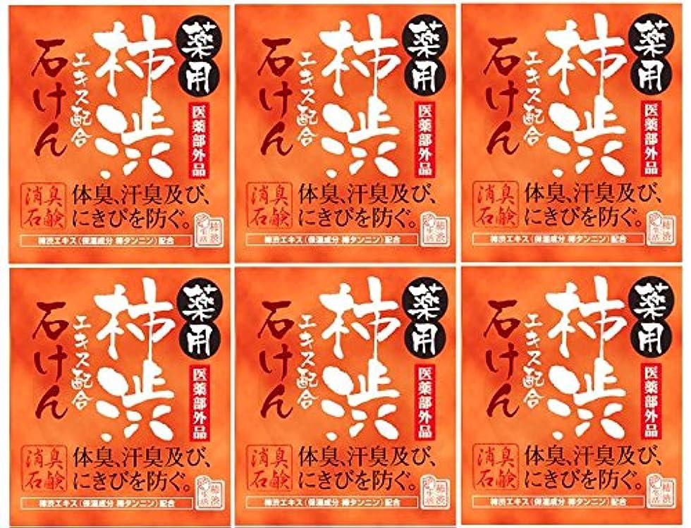 うるさい焼くトーストマックス薬用柿渋石けん100g箱×6箱セット