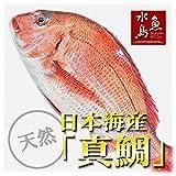 魚水島 天然真鯛 マダイ 桜鯛 日本海産 2.0〜2.4キロ物