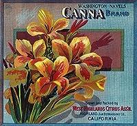 Cannaオレンジラベル 16 x 24 Giclee Print LANT-1756-16x24