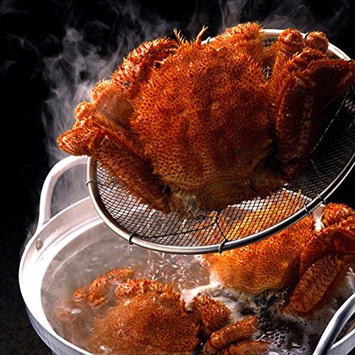 北海道産 極上 毛ガニ 特大サイズ 蟹味噌たっぷり 毛蟹 約700g×2尾