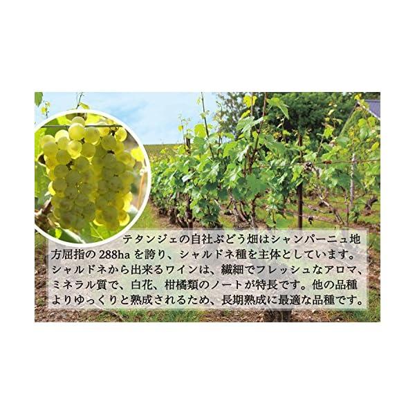 【ノーベル賞晩餐会で提供された珠玉のシャンパン...の紹介画像5