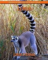 Lemur: Amazing Pictures and Facts About Lemur