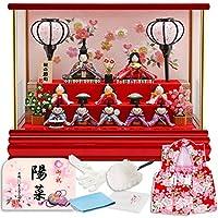 雛人形 リュウコドウ ちりめん ふっくら ひな人形 ケース飾り 十人飾り 丸金柱 キャンディーレッド ラインストーン 1.さくら カラー h293-rkcp-ca29-3-1-10
