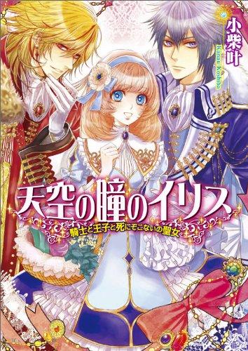 天空の瞳のイリス 騎士と王子と死にぞこないの聖女 (ビーズログ文庫)の詳細を見る