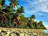 Kwajalein Atoll、マーシャル諸島–キャンバスプリント(32x 24cm、額なし)