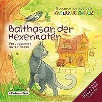 Balthasar, der Hexenkater - Freundschaft unter Tieren: Geschichten aus dem Kinderkartonhaus